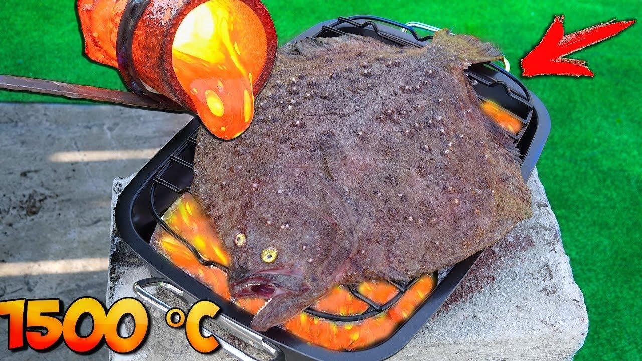 EXPÉRIENCE: LAVA vs FISH