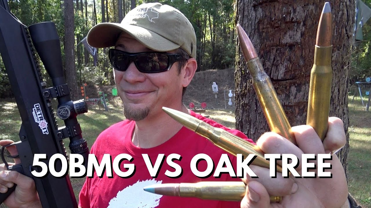 50 CAL VS Mighty Tree Oak
