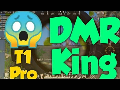 Chinois T1 Pro pour LGD – DMR King Montage 😈