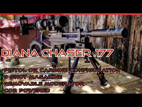 Critique de Diana Chaser • Pistolet à plomb CO2 • Pistolet antiparasitaire à portée parfaite