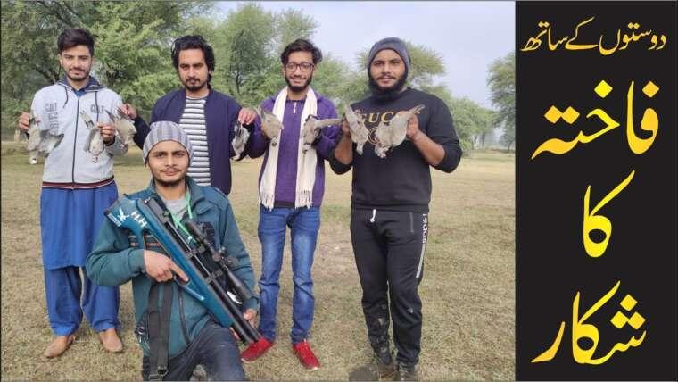 Colombe à la chasse avec des amis    Chasse à la colombe avec un fusil à air    Chasse à la colombe au Pakistan   Trucs et astuces de chasse