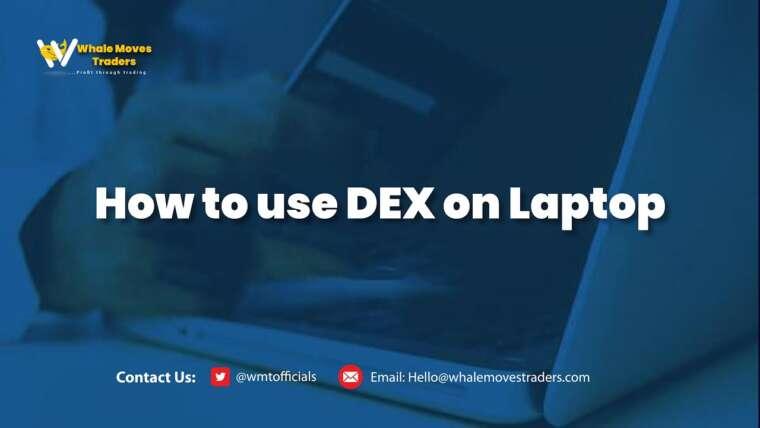 Comment utiliser DEX sur ordinateur